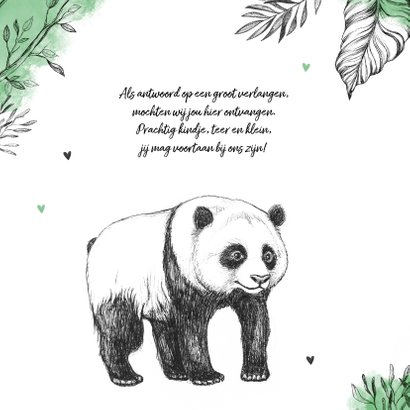 Geboortekaartje hip pandabeer jungle dieren unisex 2