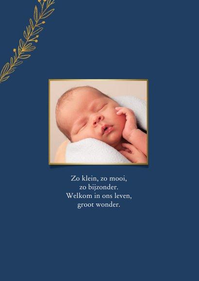 Geboortekaartje jongen klassiek met gouden takjes 2