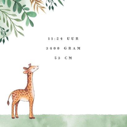 Geboortekaartje jongen met bladeren waterverf en  giraffe's  2