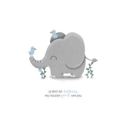 Geboortekaartje jongen met lieve olifant en vogeltjes 2