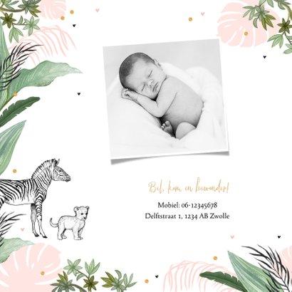 Geboortekaartje jungle dieren olifant leeuw confetti meisje 2
