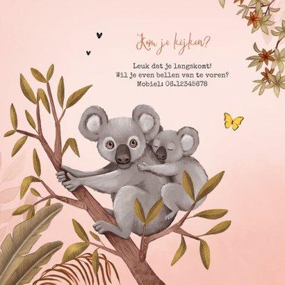 Geboortekaartje jungle meisje koala beer vlinders 2