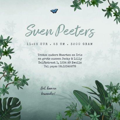 Geboortekaartje jungle toekan vlinder dieren groen 3