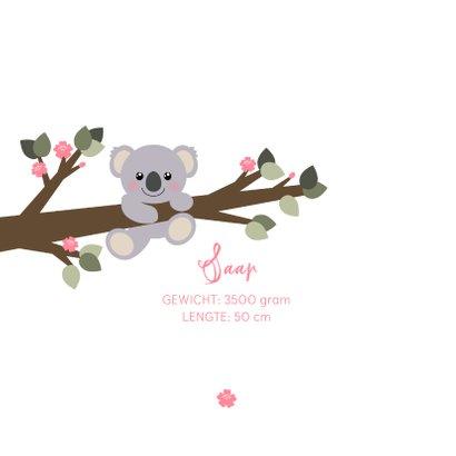 Geboortekaartje koala aan een tak illustratie 2
