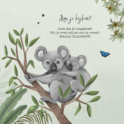 Geboortekaartje koala jungle baby groen vlinders 2