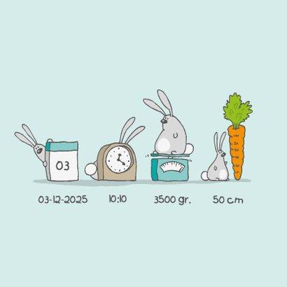 Geboortekaartje konijntjes blauw 2