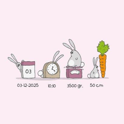Geboortekaartje konijntjes roze 2