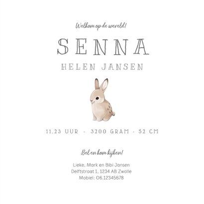 Geboortekaartje lief met konijn en hert voor broertje/zusje 3