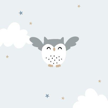 Geboortekaartje lief uiltje hip sterren wolkjes 2
