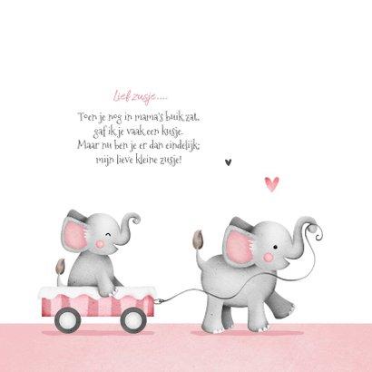 Geboortekaartje lief zusje olifantjes en hartjes 2