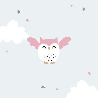 Geboortekaartje lief zusje uiltjes wolkjes sterren  2