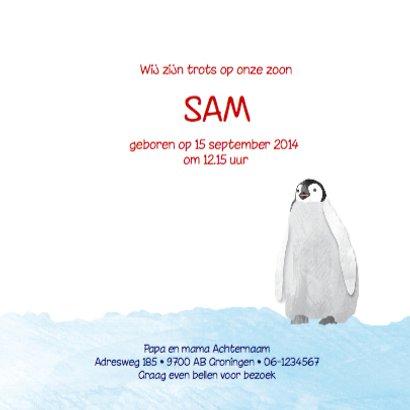 Geboortekaartje lieve pinguin 3