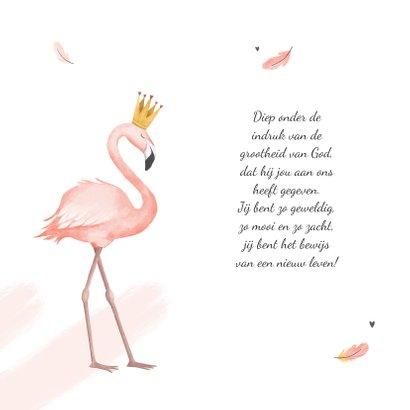 Geboortekaartje meisje flamingo veertjes verf kroontje 2