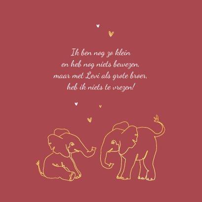 Geboortekaartje meisje olifant dieren zusje broertje goud 2