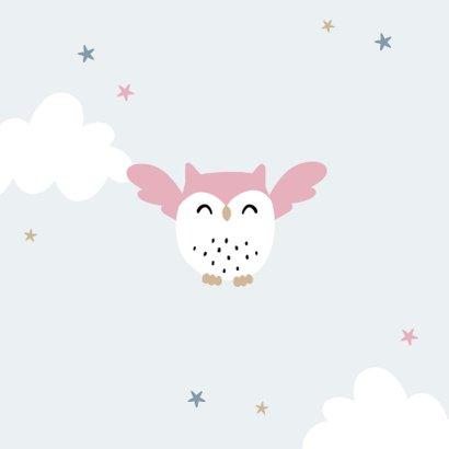 Geboortekaartje meisje uiltje wolkjes en sterren 2