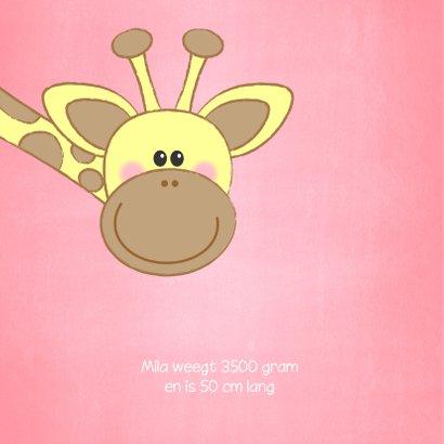 Geboortekaartje met een lief girafje en roze hartjes 2