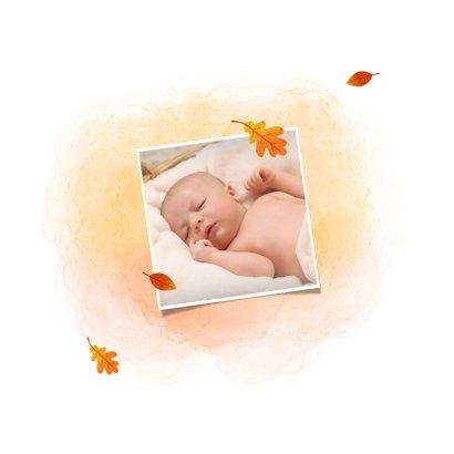 Geboortekaartje met een vosje en herfstbladeren 2