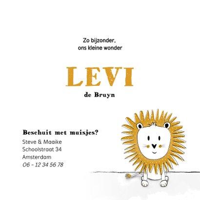 Geboortekaartje met illustratie van een leeuwtje  3