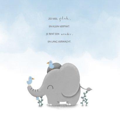 Geboortekaartje met lieve olifant, vogeltjes en waterverf 2