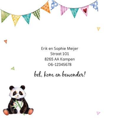 Geboortekaartje met lieve panda 2