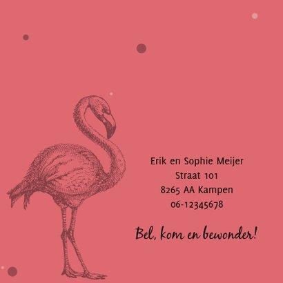 Geboortekaartje met mooie flamingo 2