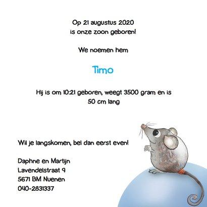 Geboortekaartje met muisjes Timo 3