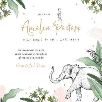 Geboortekaartje olifant leeuw jungle dieren confetti meisje 3