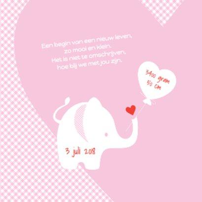 Geboortekaartje olifant - LOVZ 2