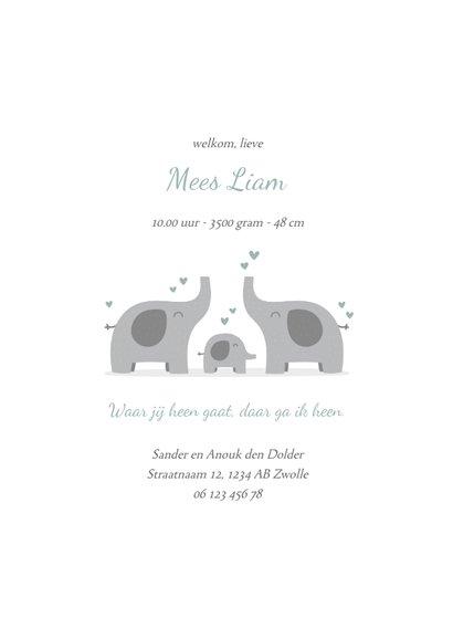 Geboortekaartje olifantjes met foto blauwgroen 3