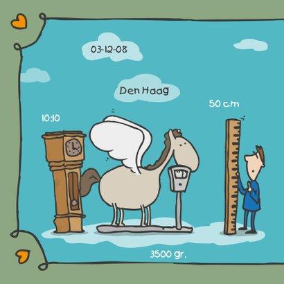 Geboortekaartje Pegasus 2