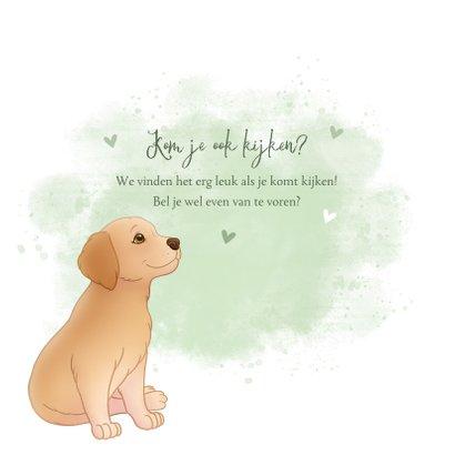 Geboortekaartje puppy groene achtegrond met hartjes vlinder 2