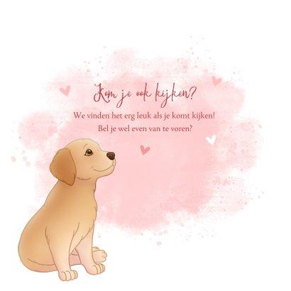 Geboortekaartje puppy roze achtegrond met hartjes vlinder 2