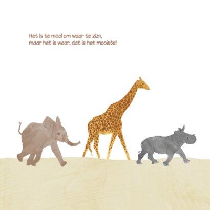 Geboortekaartje safari 2