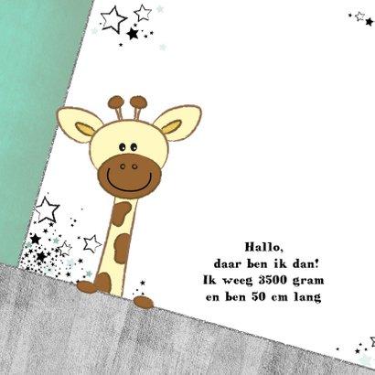 Geboortekaartje stoer kaartje met giraffe en sterren 2