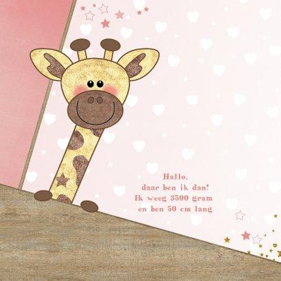 Geboortekaartje stoer kaartje met  lief girafje en hartjes 2