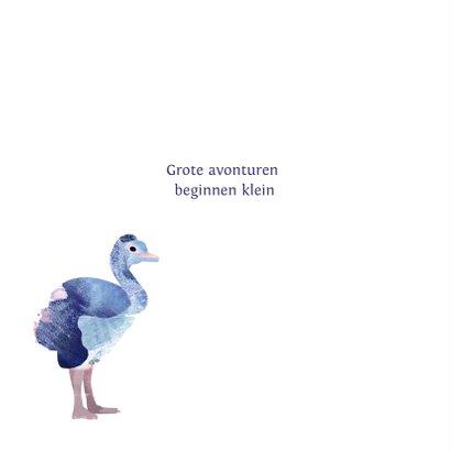 Geboortekaartje Struisvogels 2