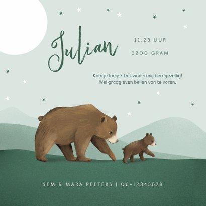 Geboortekaartje tweeling dieren beren familie sterren 2