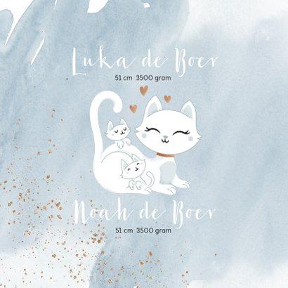 Geboortekaartje tweeling jongens poesje kat kitten waterverf 2