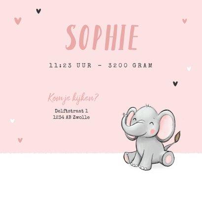 Geboortekaartje tweeling meisje oilifantjes hartjes roze 3