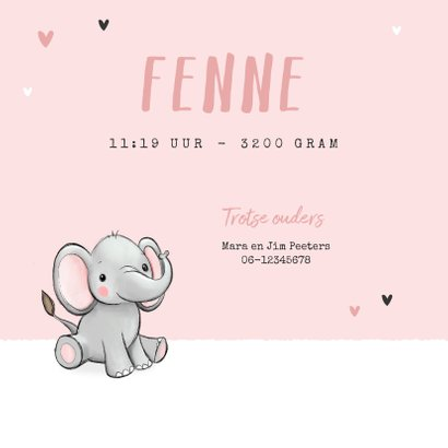 Geboortekaartje tweeling meisje olifantjes hartjes roze 2
