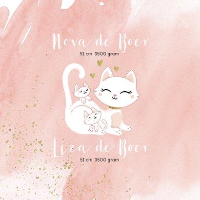 Geboortekaartje tweeling meisjes poesje kat kitten waterverf 2