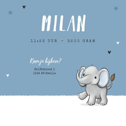 Geboortekaartje tweeling olifantjes blauw jongen sterren 3