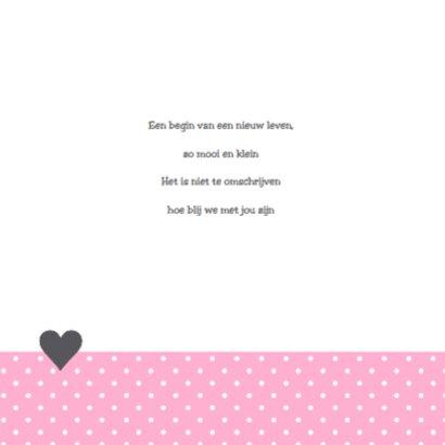 Geboortekaartje uiltje hartjes meisje 2