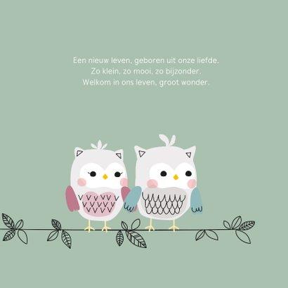 Geboortekaartje voor een jongen met uilenfamilie 2