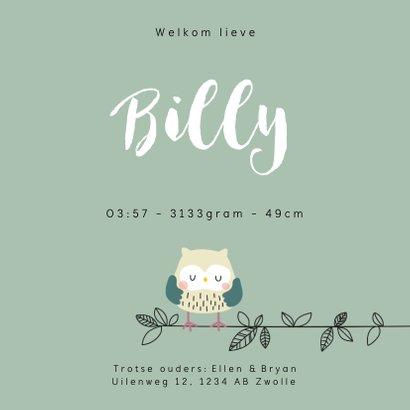 Geboortekaartje voor een jongen met uilenfamilie 3