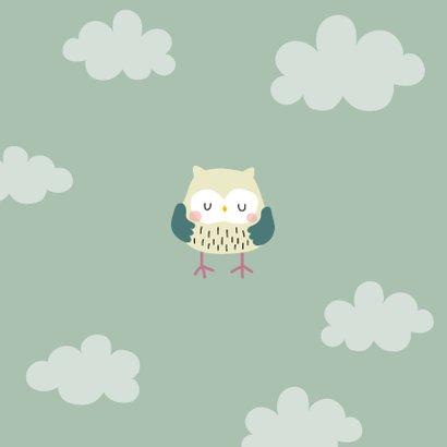 Geboortekaartje voor een jongen met uilenfamilie Achterkant