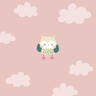 Geboortekaartje voor een meisje met uilenfamilie Achterkant