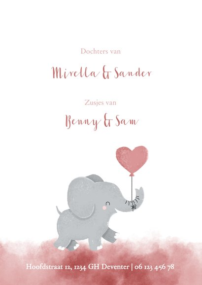 Geboortekaartje voor een tweeling met olifantje met ballon 2