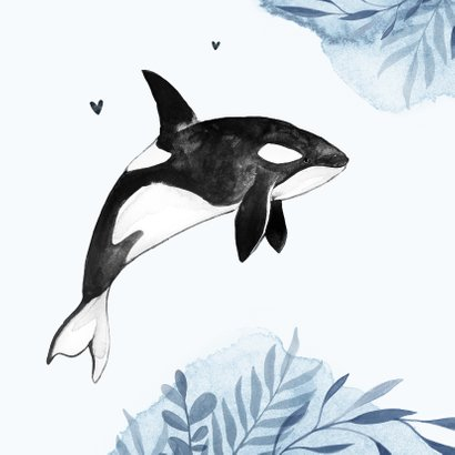 Geboortekaartje walvis orca water zee waterverf  2
