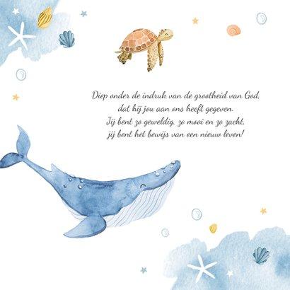 Geboortekaartje walvis waterverf lief zeesterren schildpad 2